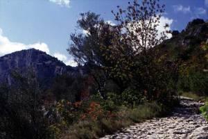 Road-@-St-Guilhem-3